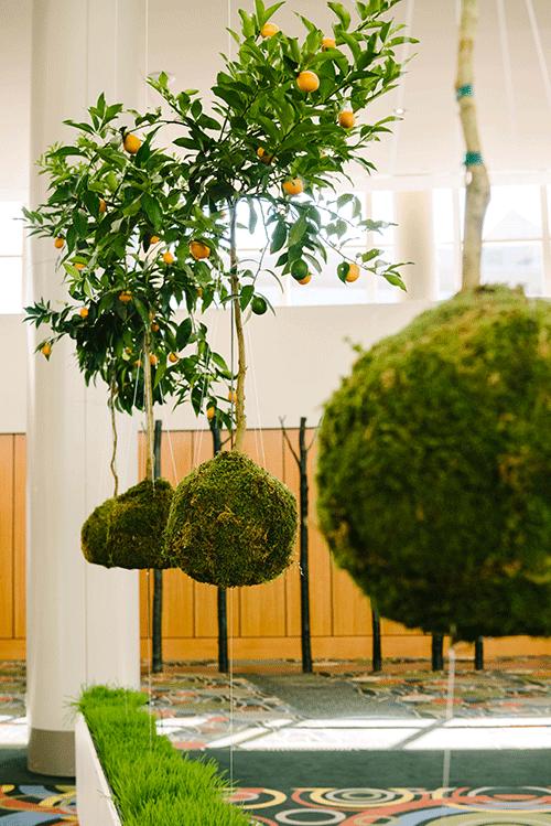 Orange Grove Art Installation doTERRA 2015 Global Convention